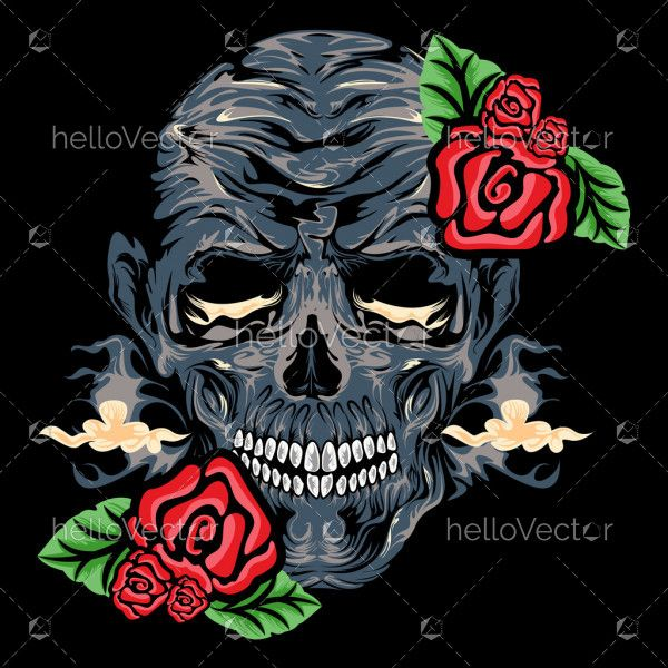 Detailed human skull graphic