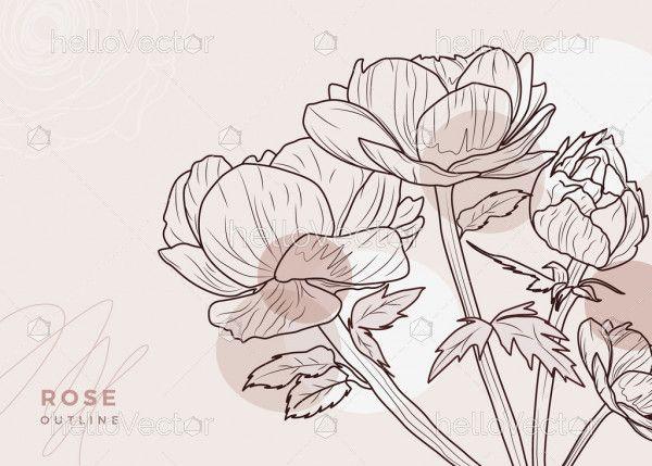 Rose Outline Illustration
