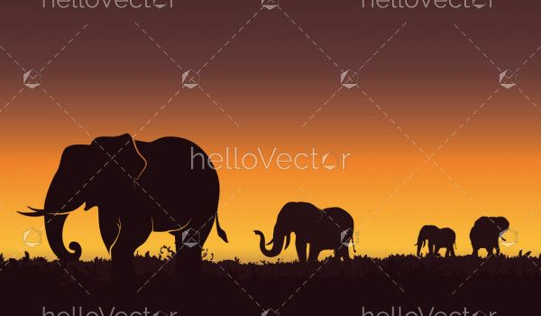 Silhouette landscape illustration of a group of elephants. Beautiful sunset, Nature background - Vector illustration.