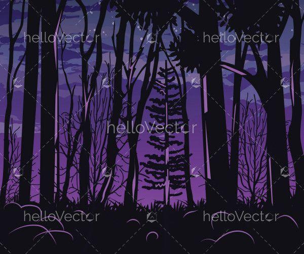 Night forest landscape