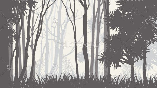 Silhouettes of trees in the misty forest