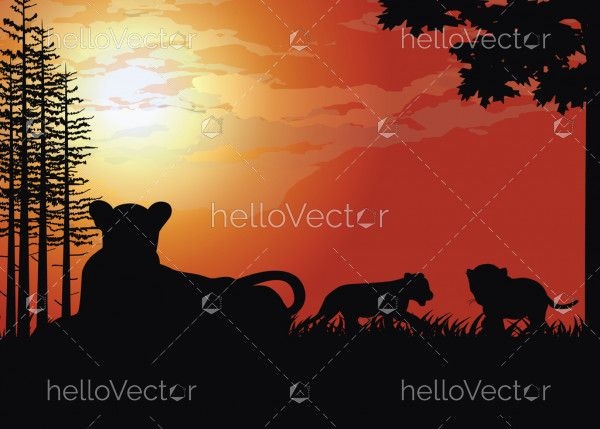 Tiger silhouette at sunset