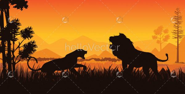Tiger and lion fighting silhouette